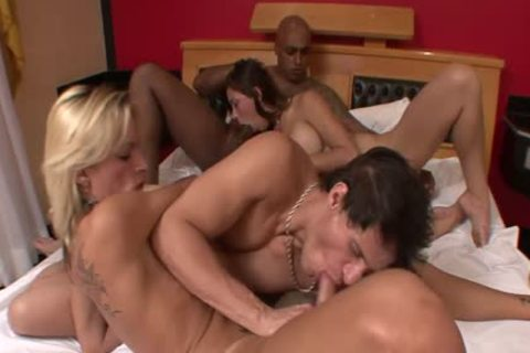 Trans Erotica tgirl group bunch-sex