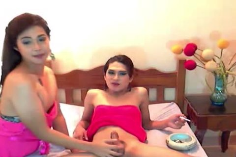 excited And beautiful ladyboys