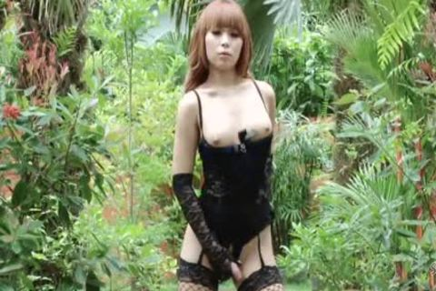 Salacious Ladyboys Savoring The engulf N fuck Action With